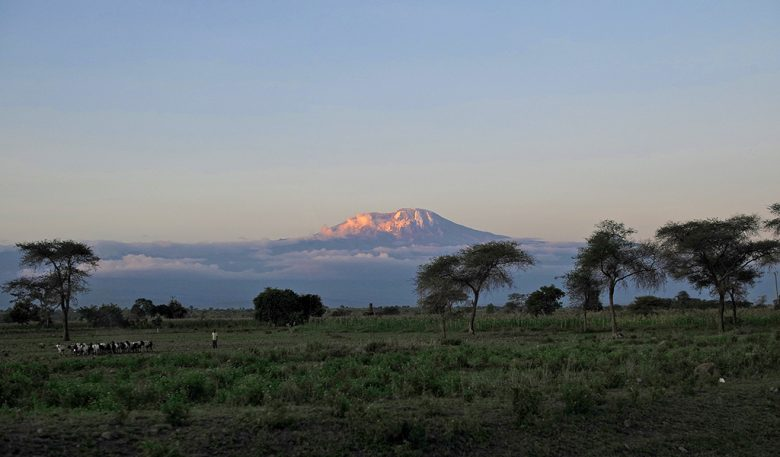 Mt. Kenya and Mt. Kilimanjaro climb